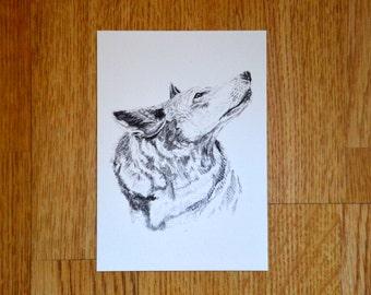 Illustrated Wolf Postcard