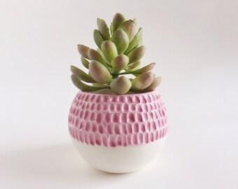 Carved Succulent Planter - Pink Ceramics - Ceramics and Pottery