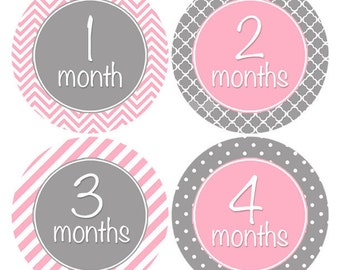 FREE GIFT, Baby Girl Month Stickers, Baby Month Stickers, Month to Month, Monthly Baby Stickers, Milestone Stickers, Pink, Grey, Gray (318)