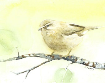 Song Bird -  4 x 6 inches Original Watercolor