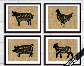Beef, Chicken, Pork and Lamb  (Butcher Diagram Series) - Set of 4 - Art Prints (Featured French Country) Kitchen Prints
