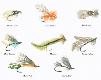 Fly Fishing/ FISH ILLUSTRATIONS/Archival Giclee Print/Freshwater Fish