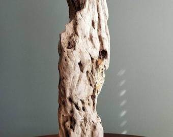 """Driftwood Sculpture """"Cultured"""""""