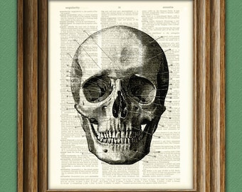 Diagram of a SKULL black over an upcycled dictionary page book art print