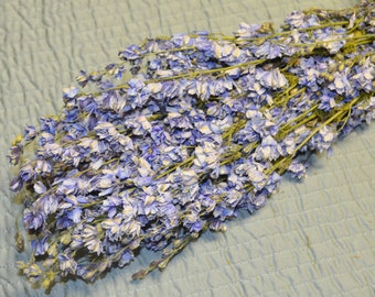 Dried Larkspur, Blue Larkspur, Dried Flowers