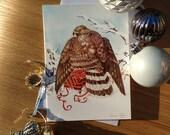 Goshawk & Gift Christmas ...
