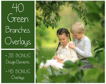 120 Green Branches Overlays - Spring Overlays - Tree Branches - Spring Background - Green Leaves - Spring Garden - PNG - Photoshop Overlays