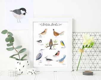 British Birds print - Nature Illustrations - Garden Birds Wall Art - A4 Print - Gift For Nature Lover