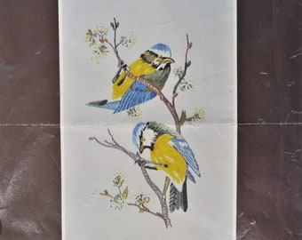 Vintage blue tits embroidery kit by Penelope, started