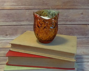 Orange Mirrored Owl Vase