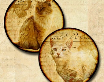 Cats Images 1 Inch Round Circles Digital Download  Help Rescued Cats