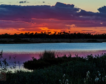 Sunset Sunrise Seaside Coastal Beach Marshland - Fine Art Photograph Print Picture
