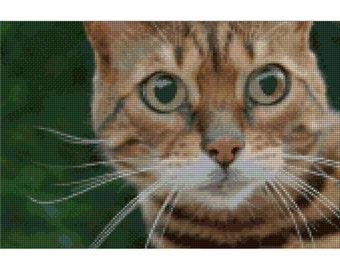Vala the Bengal Cat Needlepoint kit