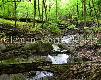Stream, Brook, Instant Download, 8x10, River, Fine Art Digital Photo, Digital Printable, Photography, in the woods, forest, woodland