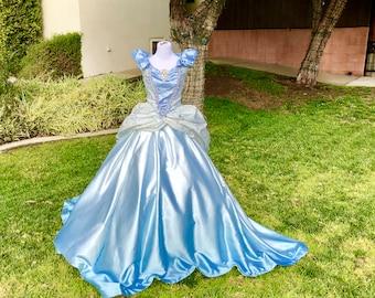 Adult Cinderella Costume Custom Made
