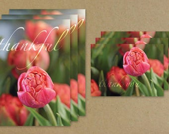 Thankful, Flower Greeting Card Combo Set, Tulip Thank You Card, Flower Notecard Set, Benefiting St. Louis Area Foodbank