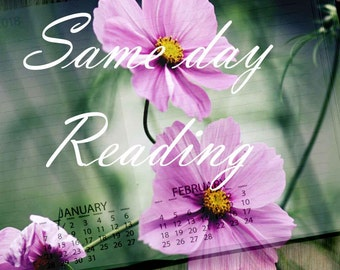 Same day psychic tarot reading, delivered within 24 hours.