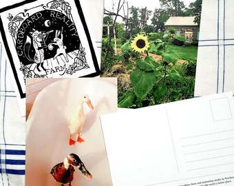 Cardboard Reality Postcards - Set of 4