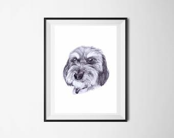 A5 Pet Portraits - Pencil