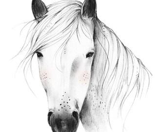 Wild Horse - 8X10, 11X14 Art Print