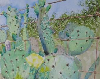 Watercolor Painting, Cactus in Barbed Wire Fence, 11x14 , Nan Henke original art