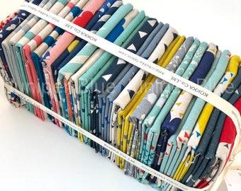 HALF METER Bundle- Echino, 22 Prints, Kokka Fabrics, Japanese Fabric, Lightweight Canvas
