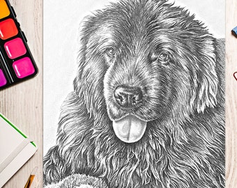 Printable coloring page, Adult Coloring Page, Instant download coloring, dog coloring, coloring page, coloring, coloring book for adult