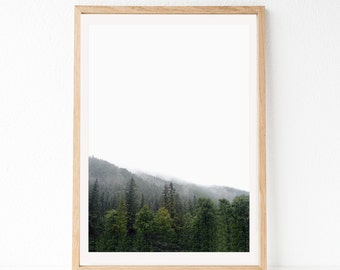 Forest Print, Nature Prints, Nature Art, Forest Photography, Forest Wall Art, Minimal Photography, Nature Printable, Forest Poster, Modern