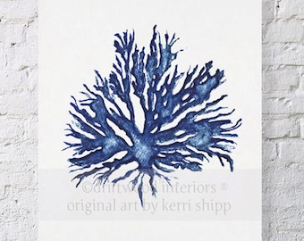 Sea Coral in Denim II Watercolor Print - Sea Life Art Prints - Blue Coral Print - Sea Fan Art - Denim Sea Corals - Watercolour Print