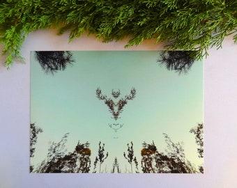Printable art, digital download, mirror photograph, botanical wall art, greenery, mirror image, antler photograph, antlers