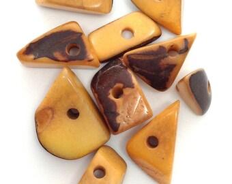 Tagua Dreiecke, mittel, safran, 15mm, 10 Stück, Ta