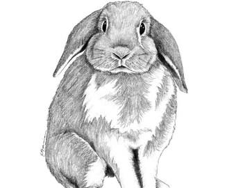 Rabbit Art, Rabbit Print, Rabbit Wall Art, Bunny Nursery, Bunny Rabbit Art, Bunny Art, Bunny Wall Art, Bunny Print Nursery, Rabbit Nursery