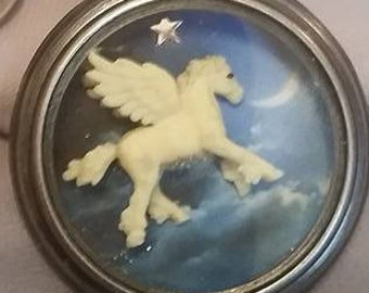 Winged Horse Night Flight