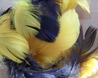 assortment of 15 mix quality feathers, black and dark yellow.
