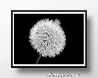 Dandelion Photography, Fluffy Dandelion, Photography nature, Dandelion poster, Flower poster, Dandelion print, Fine art photography,