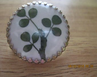 BEAUTIFUL Vintage Gold & REAL Clover Leaf/Shamrock Brooch.... 7867..St. Patty's Day,I'm Irish,Gifts 4 Her,gifts for Mom,Summer wear