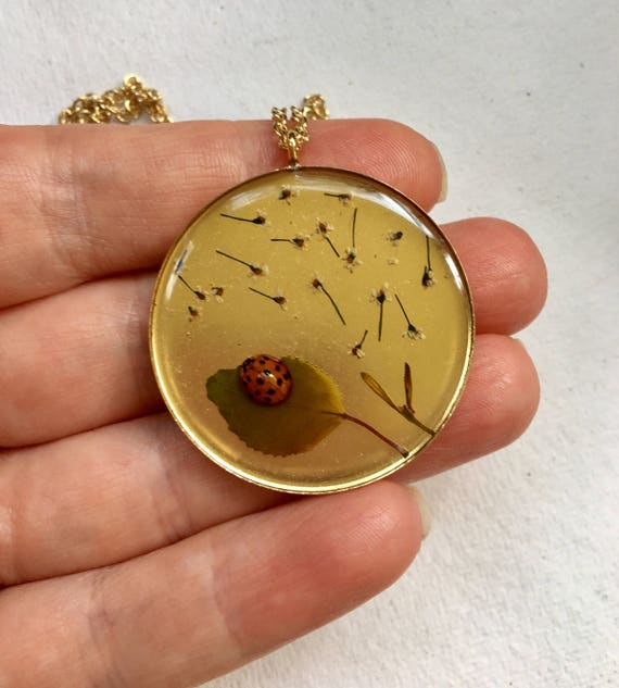 Real ladybug and Queen Anne's lace flower brass circle necklace