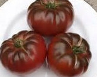 Cherokee Purple Heirloom Tomato Seeds 30 seed Non GMO