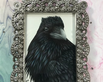 Raven colored pencil drawing in ornate silver frame
