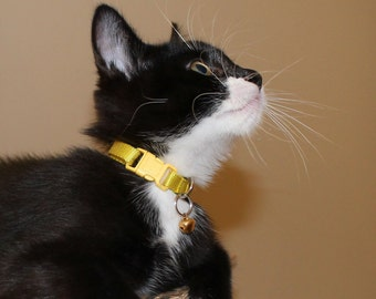 """Cat Collar / Mix and Match / 3/8"""" Wide / 9mm Wide / Breakaway Buckle / Red / Yellow / Blue / Black / White / Green / Pink / Orange / Purple"""