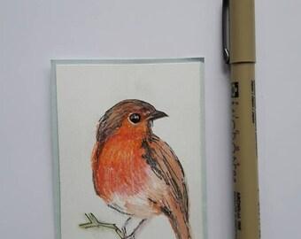 Sketch watercolour pencil Robin bird atc art card aceo