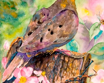 Morning Dove 11 x 14 Giclee Print - Clearance