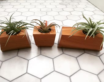 Geometric Planters (Set of 3)