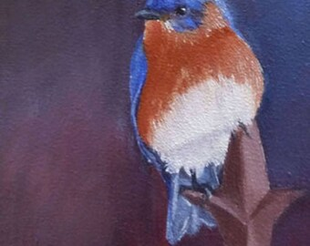 Bluebird 3.5x5 Blank Notecard with Envelope