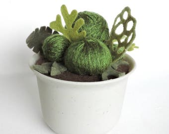 Yarn & Felt Moss Green and Lichen Plant in Pot· Potted Plant· House Plant· Kid Friendly· Plastic Pot· Desk Plant· Fake Plant· Housewarming