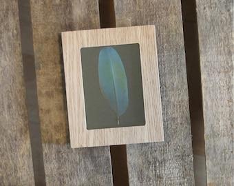 Framed araruna Macaw feather / unique / the pen box