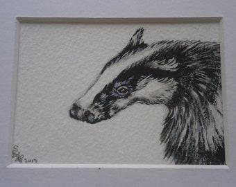 Original watercolour mounted aceo of a badger