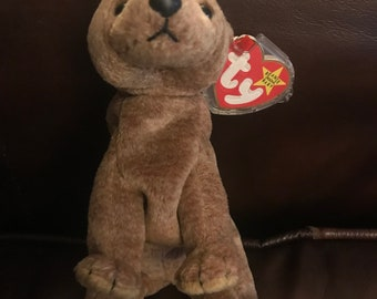 """Retired Ty Beanie Baby """"PECAN"""" w/tag errors. Excellent condition."""