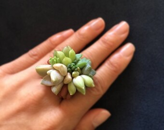 Live succulent ring