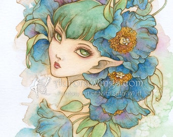 Free US Shipping  - Himalayan Blue - Blue Poppy - Meconopsis- Big Eye Elf Fairy - Fantasy Illustration Print 5 x 7 - by Mitzi Sato-Wiuff